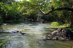 kuruva-islands--wayanad-kabini-river